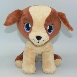 Domácí mazlíček pes