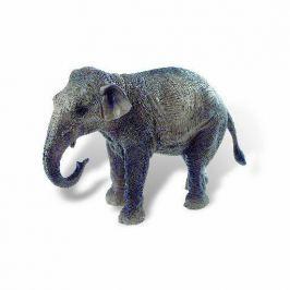Slonice indická