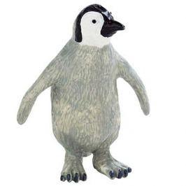 Tučňák mládě