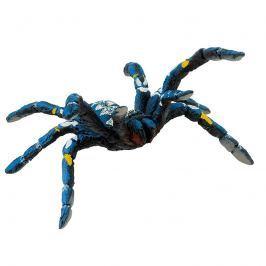 Tarantule modrá