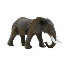 EPline Slon africký