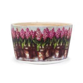 Obal na květiny kulatý Hyacint