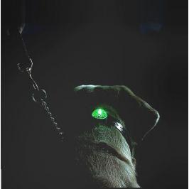 Beacon Locator SportDog svítící přívěšek - modré