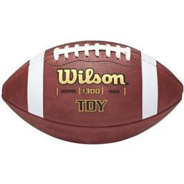 Wilson Tdy Youth Traditional Football