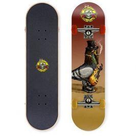 Street Surfing Street Skate Street N Roses