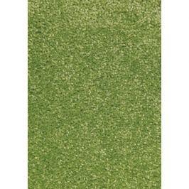 Hanse Home Collection koberce Kusový koberec Nasty 101149 Grün,   80x150 cm   Zelená