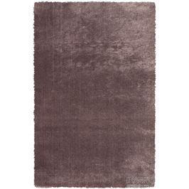 Sintelon koberce Kusový koberec Dolce Vita 01/BBB,   200x290 cm Hnědá