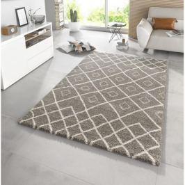 Mint Rugs - Hanse Home koberce  Eternal 102579 160x230 cm cm,   160x230 cm   Hnědá