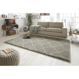 Mint Rugs - Hanse Home koberce Kusový koberec Allure 102752 graun creme,   160x230 cm   Šedá