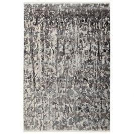 Obsession koberce Kusový koberec Laos 459 Silver,   160x230 cm Šedá