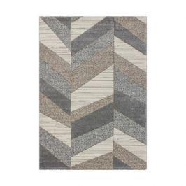 Lalee koberce Kusový koberec Havanna HAV 424 Platin,   80x150 cm Hnědá