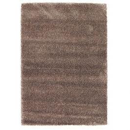 Osta luxusní koberce Kusový koberec Lana 0301 910,   200x290 cm Hnědá