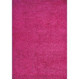 Spoltex koberce Liberec Kusový koberec Expo Shaggy 5699-322,   60x115 Fialová