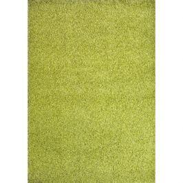 Spoltex koberce Liberec Kusový koberec Expo Shaggy 5699-344,   80x150 cm Zelená