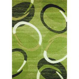 Spoltex koberce Liberec Kusový koberec Florida green 9828,   120x170 cm Zelená