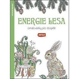 Energie lesa Omalovánky pro dospělé