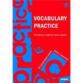 Vocabulary Practice: Cvičebnice anglické slovní zásoby. 25 tematických okruhů nejen k maturitě.