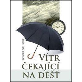 Vítr čekající na déšť