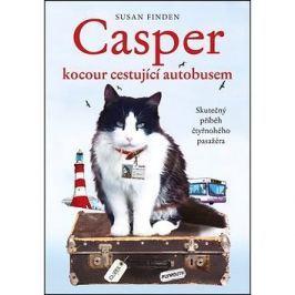 Casper, kocour cestující autobusem: Skutečný příběh čtyřnohého pasažéra