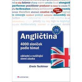 Angličtina 4000 slovíček podle témat: základní a rozšiřující slovní zásoba