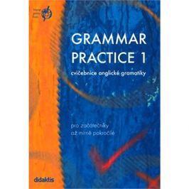 Grammar practice 1: cvičebnice anglické gramatiky pro začátečníky až mírně pokročilé