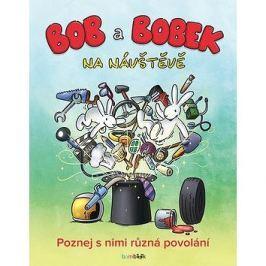 Bob a Bobek na návštěvě: Poznej s nimi různá povolání